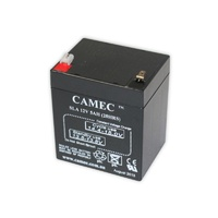 Camec Breakaway System Replacement Battery